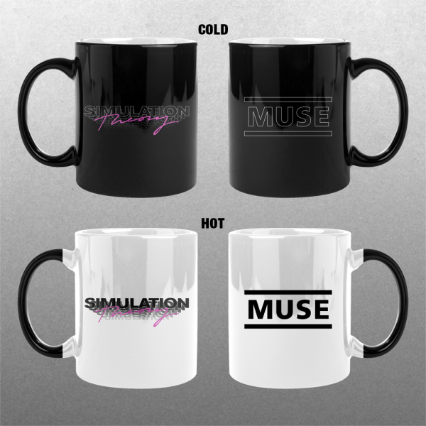 Hot Cold Simulation Theory Mug