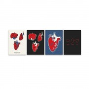 Liver Lung FR Postcard Set