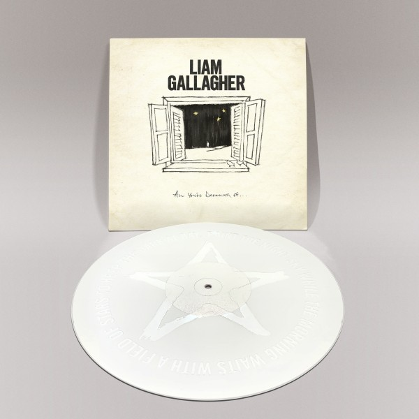 "All You're Dreaming Of - White 12"" Vinyl"