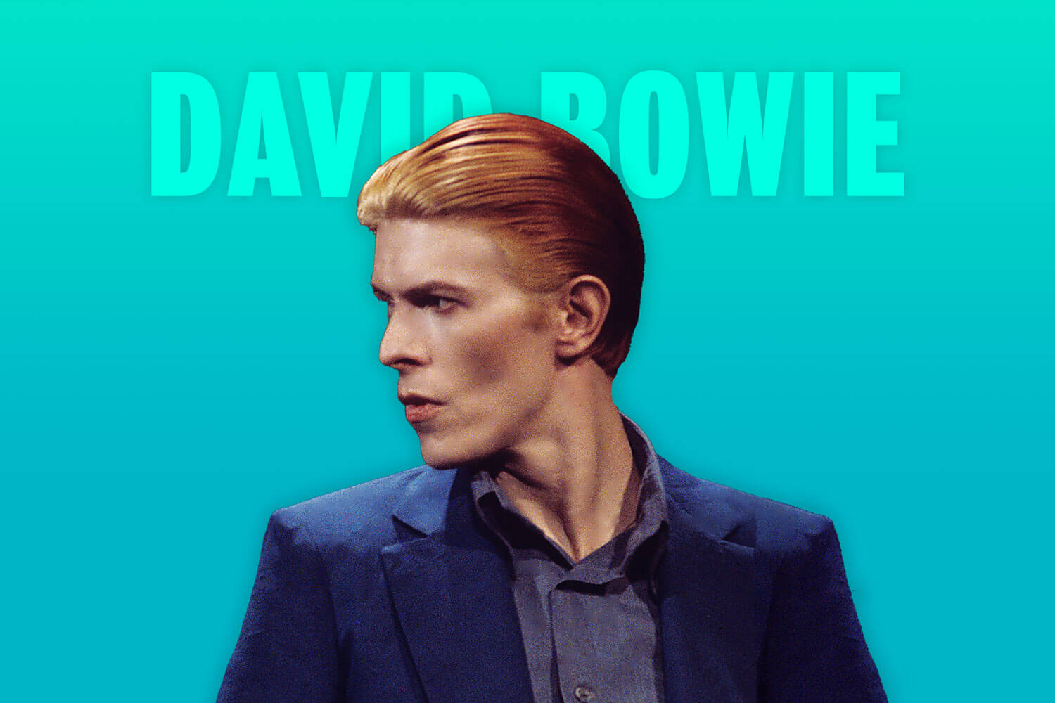 Shop David Bowie products
