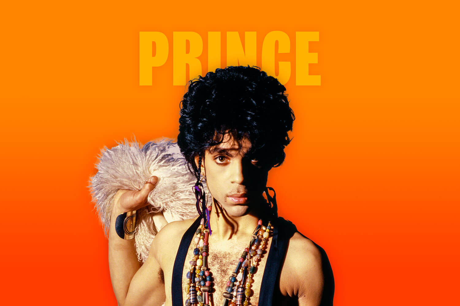 Shop Prince products